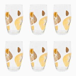 Bicchieri decorati, Repubblica Ceca, anni '60, set di 6