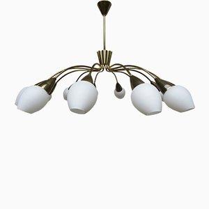 Lámpara de techo italiana de latón de 12 brazos, años 50