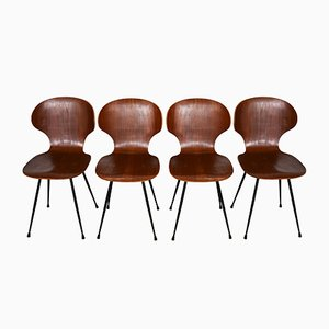 Italian Curved Plywood Teak Chairs, 1960s, Set of 4