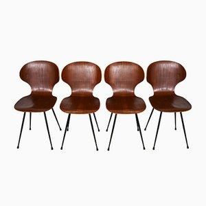 Italienische gebogene Schichtholz Teakholz Stühle, 1960er, 4er Set