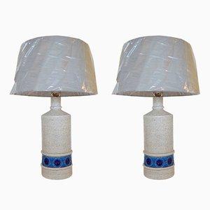 Lampes de Bureau Mid-Century par Aldo Londi pour Bitossi, Set de 2