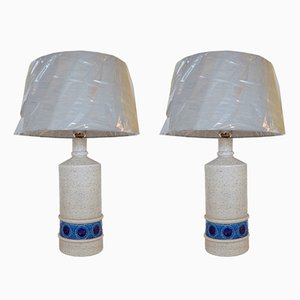 Mid-Century Table Lamps by Aldo Londi for Bitossi, Set of 2