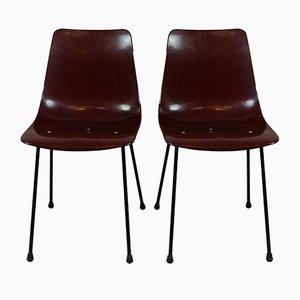 CM131 Stühle von Pierre Paulin für Thonet, 1953, 2er Set