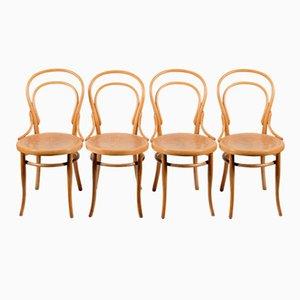 Nr. 14 Thonet Stühle, 1920er, 4er Set
