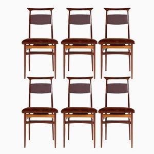 Palisander & Fohlen Stühle von Ico & Luisa Parisi, 1950er, 6er Set