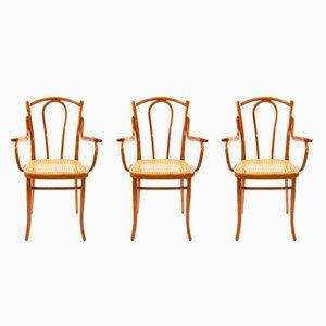 Jugendstil Armlehnstühle Nr. 56 F aus Bugholz, 3er Set