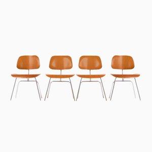 Sedie DCM di Charles & Ray Eames per Herman Miller, anni '60, set di 4