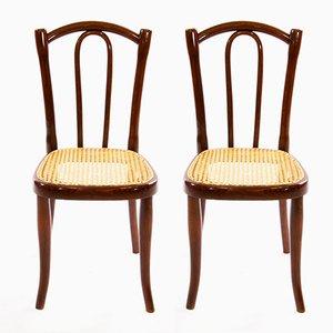 Chaises pour Enfants No. 2 Art Nouveau en Bois Courbé de Thonet, Set de 2