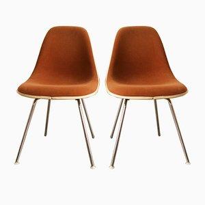 Chaises Marrons Vintage par Charles & Ray Eames pour Herman Miller, Set de 2