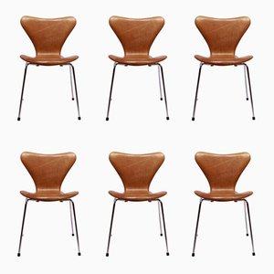 Sedie nr. 3107 vintage di Arne Jacobsen per Fritz Hansen, set di 6