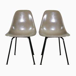 DSX Stühle von Charles & Ray Eames für Herman Miller, 1960er, 2er Set
