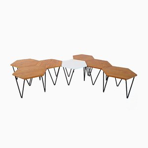 Modular Coffee Tables by Gio Ponti for I.S.A., 1950s, Set of 7