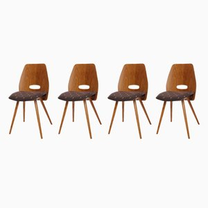 Chairs from Tatra Nábytok, 1960s, Set of 4