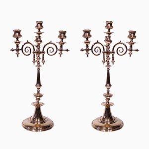 Hohe Messing Vier Arm Kerzenständer, 1880er, 2er Set