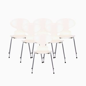 Model 3101 White Dining Chairs by Arne Jacobsen for Fritz Hansen, 1986, Set of 6