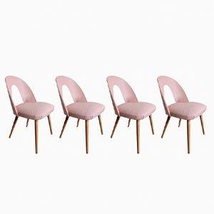 Mid-Century Chairs by Antonin Šuman, Set of 4