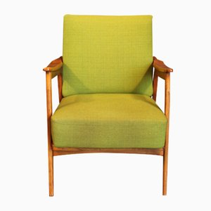 Mid-Century Antimott Easy Chair by Wilhelm Knoll