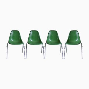 DSS Fibreglass Chairs by Charles & Ray Eames for Herman Miller, Set of 4