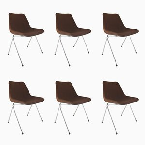 Stackable Chairs by Robin Day for Hille, 1960s, Set of 6
