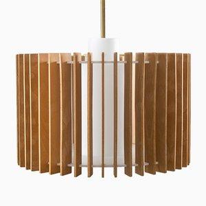 Lámpara colgante sueca Mid-Century de Hans-Agne Jakobsson