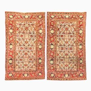 Alfombras Agra indias en rojo y amarillo con fondo beige de lana, siglo XIX. Juego de 2