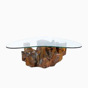 Mesa de centro Mid-Century de nudo de raíz con superficie de vidrio, años 50