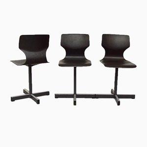 Pagholz Stühle von Adam Stegner für Flötotto, 1970er, 3er Set