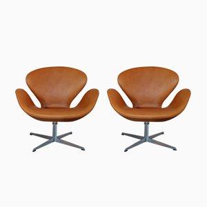 Swan Chairs von Arne Jacobsen für Fritz Hansen, 1969, 2er Set