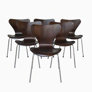 3107 Esszimmerstühle von Arne Jacobsen für Fritz Hansen, 1970er
