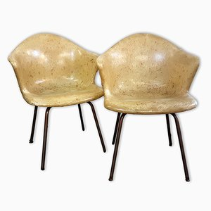 Fibreglass Chairs from Douglas, 1950s, Set of 2