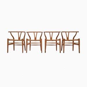 Chaises CH24 Wishbone par Hans J. Wegner pour Carl Hansen & Søn, Set de 4