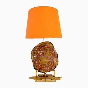Brass and Petrified Wood Table Lamp, 1970s