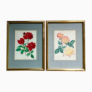 Vintage Framed Peace Rose Prints from Christian Dior, Set of 2