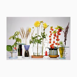 Tirage Hidden Vase par Chris Kabel
