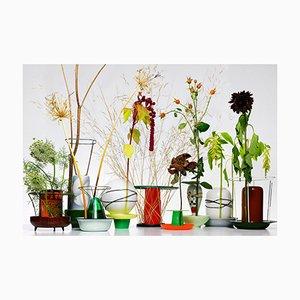 Hidden Vase Druck von Chris Kabel