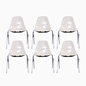 Mid-Century DSS Fiberglass Chairs by Charles & Ray Eames for Herman Miller, Set of 6