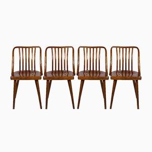 Chaises Tchèques en Bois par Antonin Suman pour TON, 1960s, Set de 4