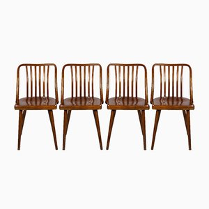 Czech Wooden Chairs by Antonin Suman for TON, 1960s, Set of 4