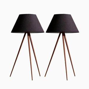 Lámparas de mesa o de pie suecas, años 50. Juego de 2