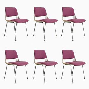 Niederländische Modell Stratus Esszimmerstühle von André Cordemeyer für Gispen, 1969, 6er Set