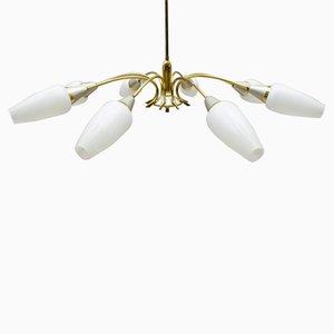 Mid-Century Brass Sputnik Ceiling Lamp, 1950s