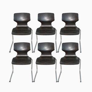 Chaises Vintage de Flötotto, Set de 6