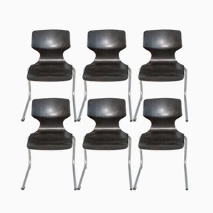 Vintage Chairs from Flötotto, Set of 6