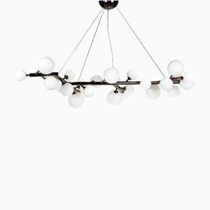 Lámpara de araña Mimosa niquelada en negro con 27 luces en vidrio lechoso de Alberto Dona