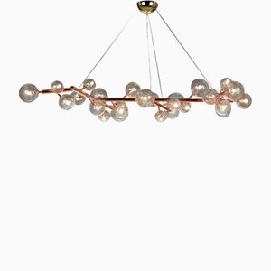 Copper Mimosa Chandelier with 27 Lights by Alberto Dona