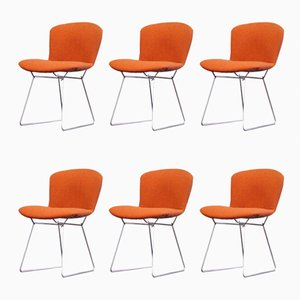 Sillas auxiliares Wire en naranja de Harry Bertoia para Knoll International, años 60. Juego de 6