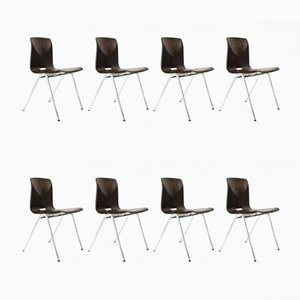 Dutch Industrial S25 School Chairs from Galvanitas, 1970s, Set of 8