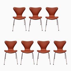 Chaises Modèle 3107 en Cuir Savanne Couleur Cognac par Arne Jacobsen pour Fritz Hansen, 1970s, Set de 2