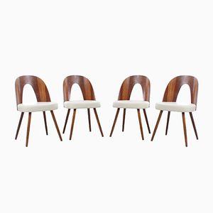 Stühle von Antonin Suman für Tatra, 1960er, 4er Set