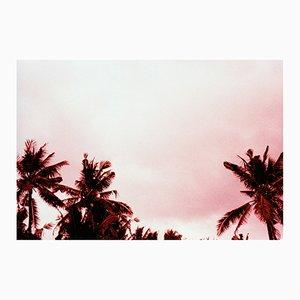 Imprimé Pink Movies par Gutterdust